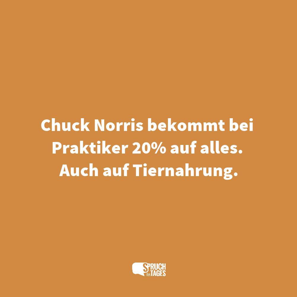 chuck norris sprüche englisch Die besten Chuck Norris Sprüche und Witze   Spruch des Tages chuck norris sprüche englisch