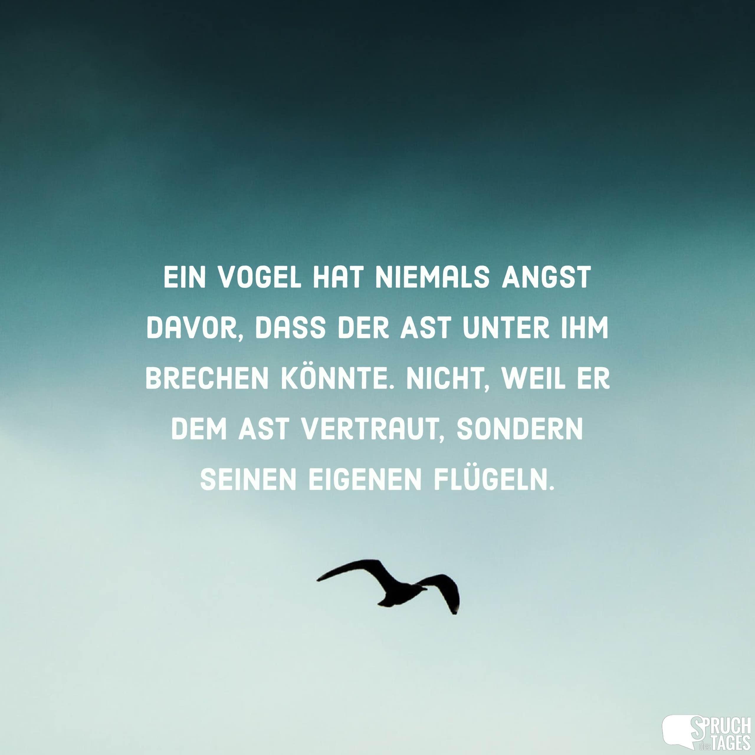 Ein Vogel Hat Niemals Angst Davor, Dass Der Ast Unter Ihm Brechen Könnte.  Nicht, Weil Er Dem Ast Vertraut, Sondern Seinen Eigenen Flügeln.