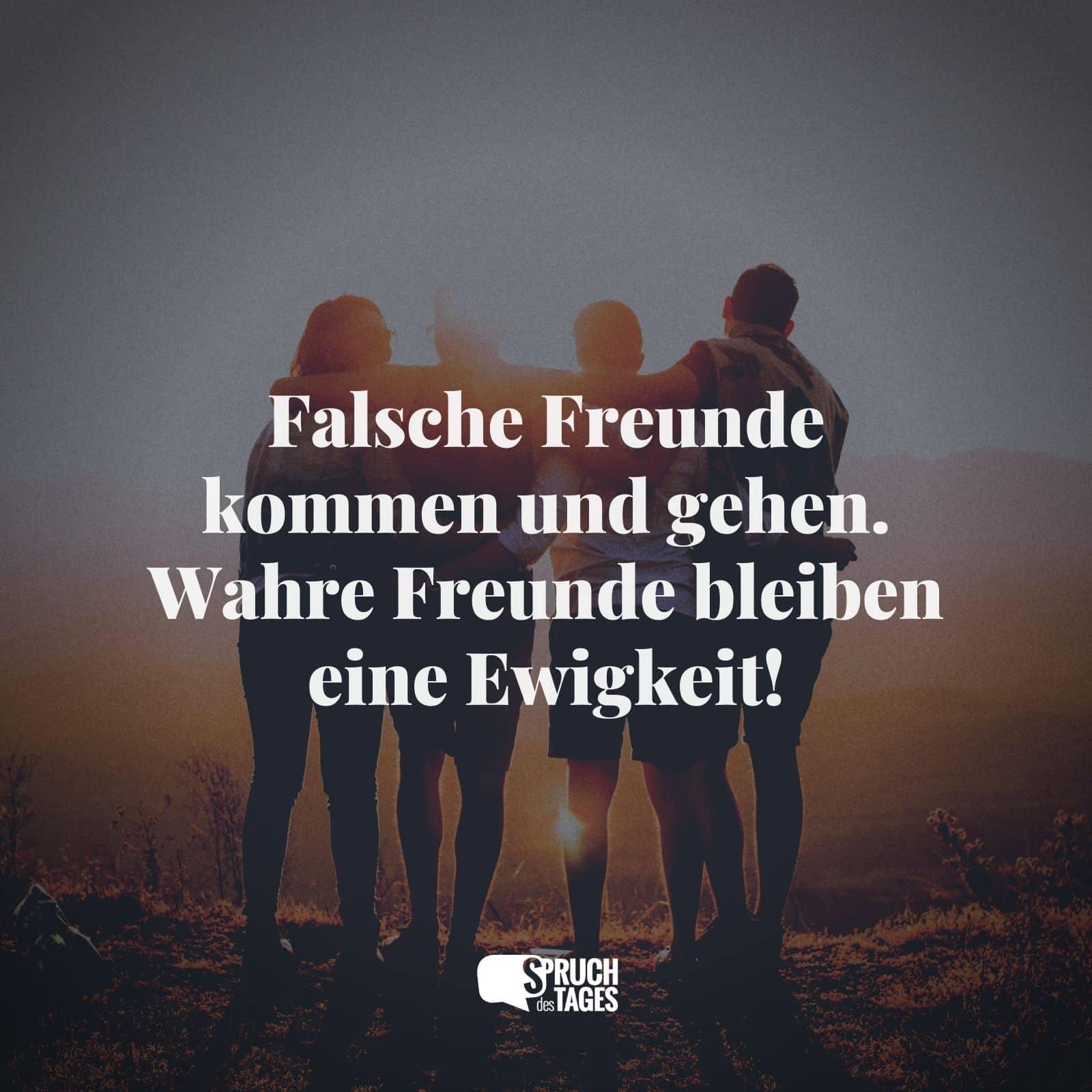 Falsche Freunde kommen und gehen. Wahre Freunde bleiben eine Ewigkeit!