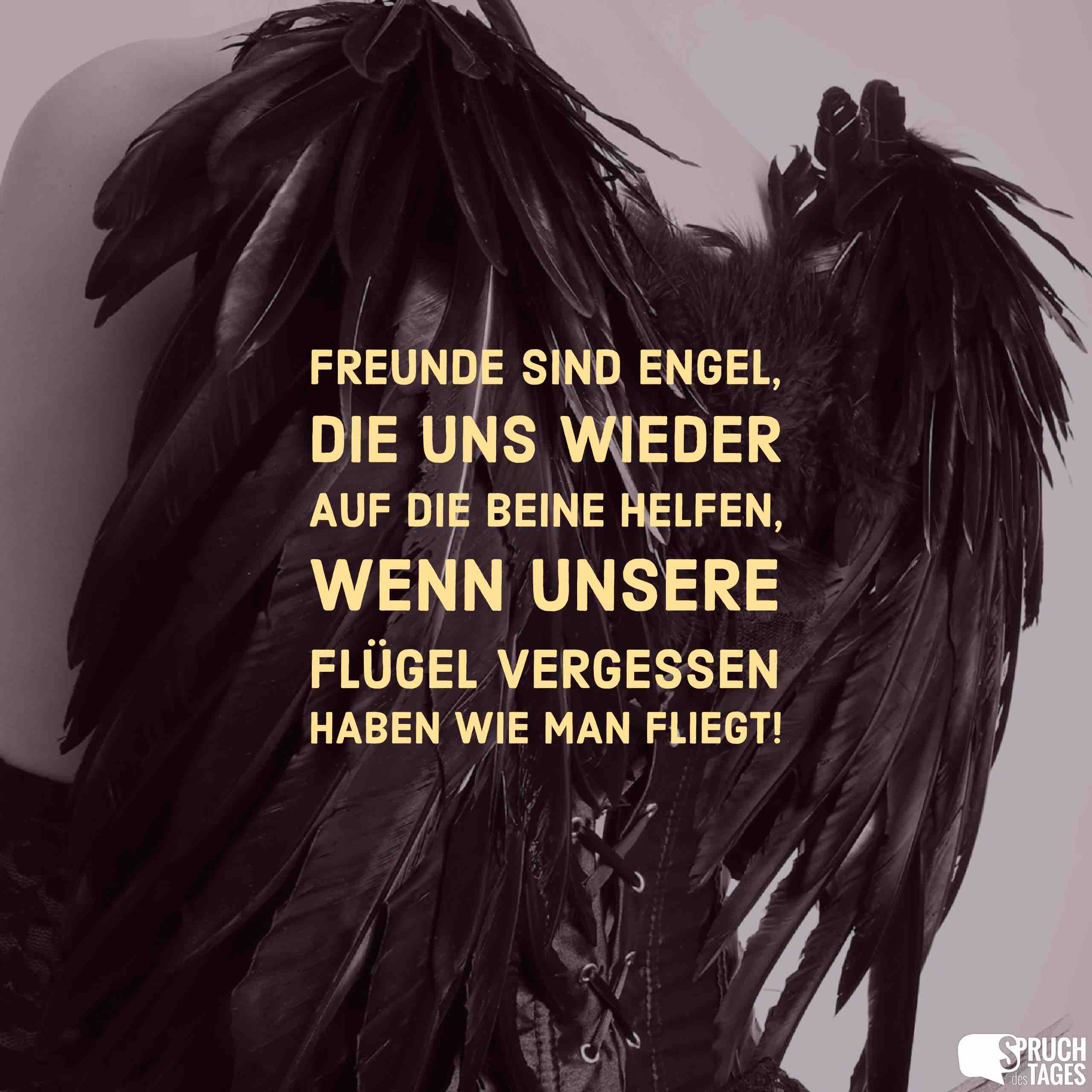 Freunde Sind Engel Die Uns Wieder Auf Die Beine Helfen