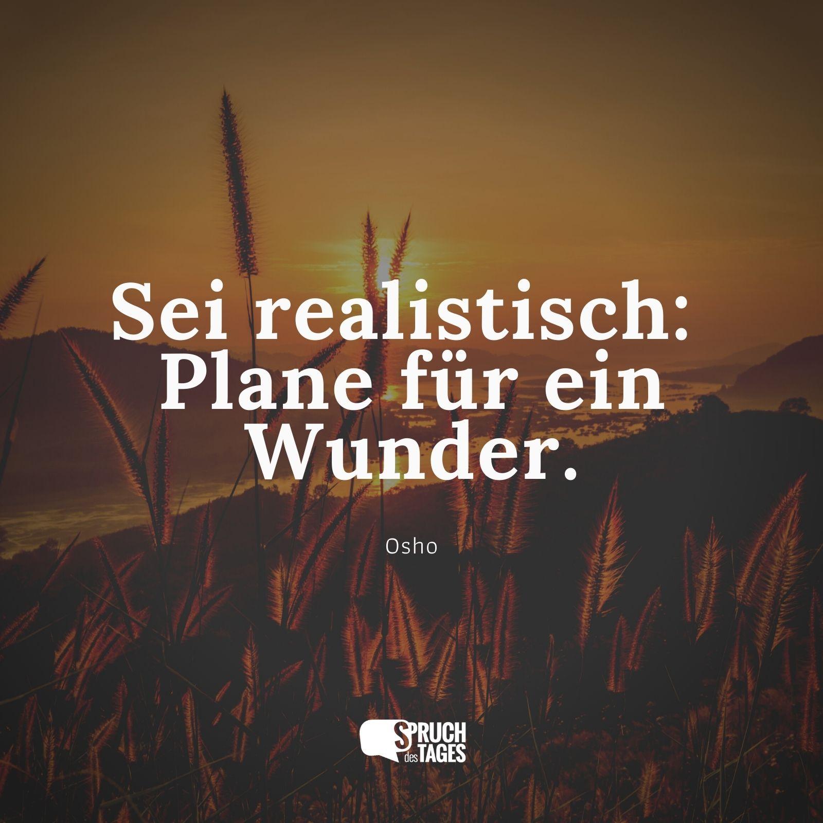 Motivationssprüche - Seite 5 Sei-realistisch-plane-fuer-ein-wunder