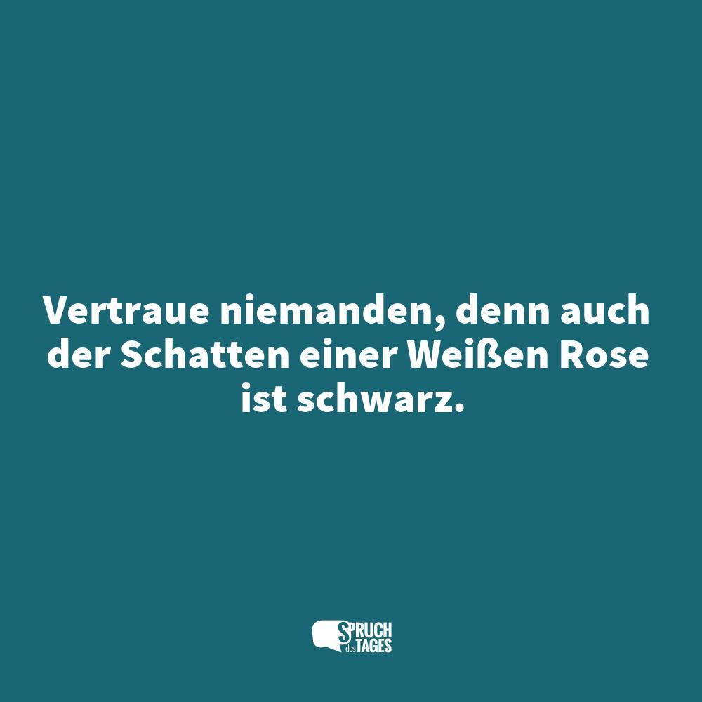 rosen sprüche englisch Vertraue niemanden, denn auch der Schatten einer Weißen Rose ist  rosen sprüche englisch