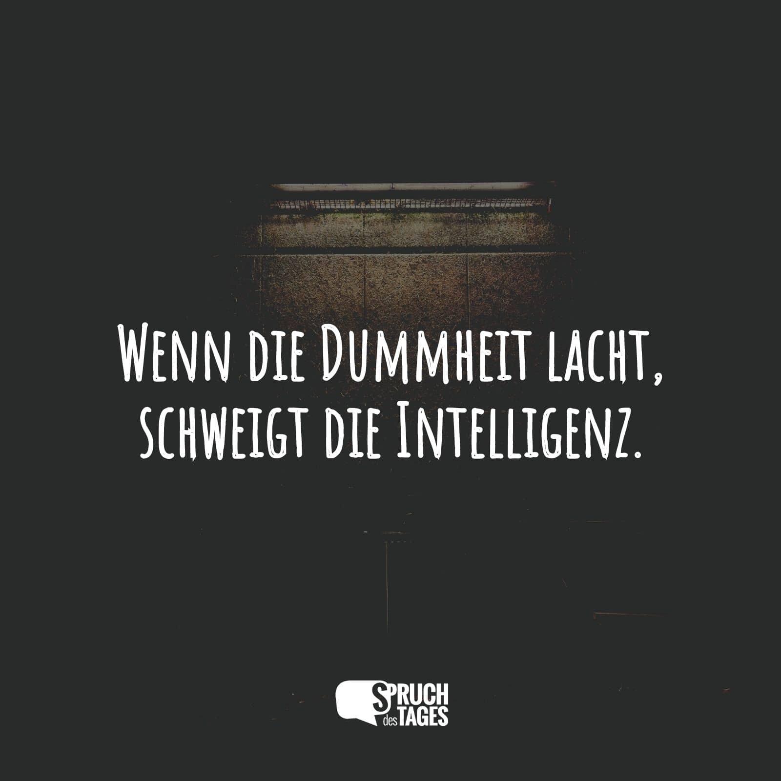 Wenn die Dummheit lacht, schweigt die Intelligenz.