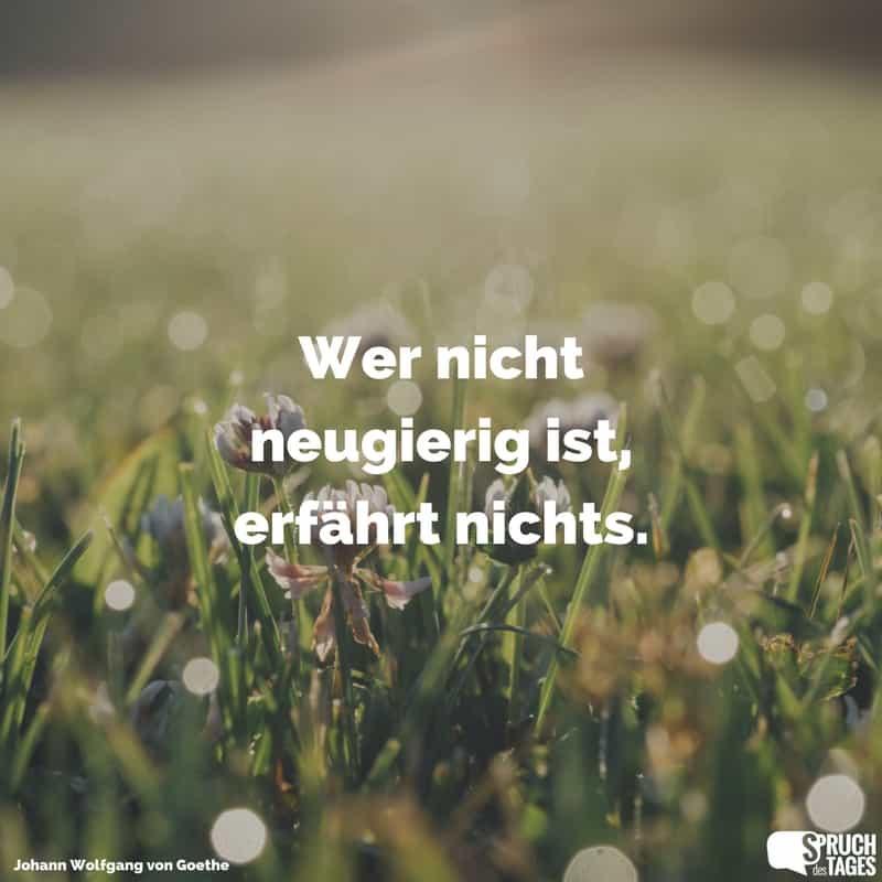 Wer Nicht Neugierig Ist, Erfährt Nichts.   Johann Wolfgang Von Goethe