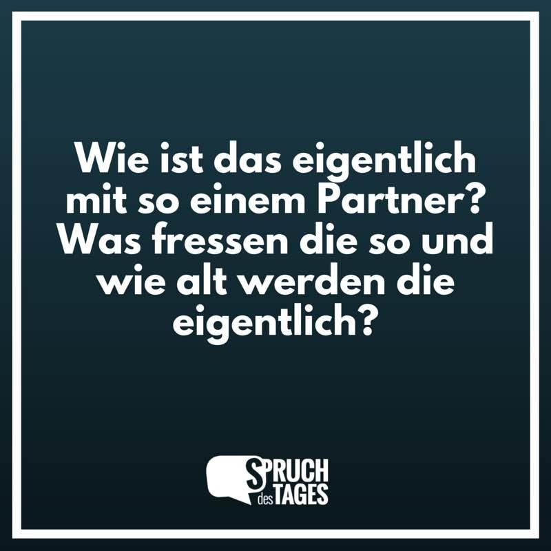 partner sprüche Wie ist das eigentlich mit so einem Partner? Was fressen die so  partner sprüche